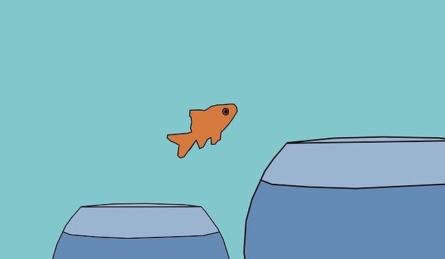 Small fish jumping