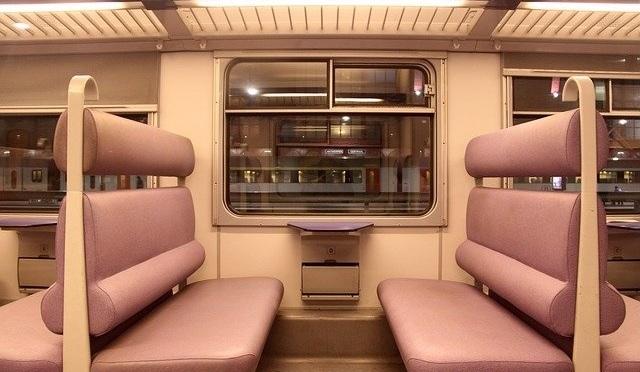 Car Train leather mayur